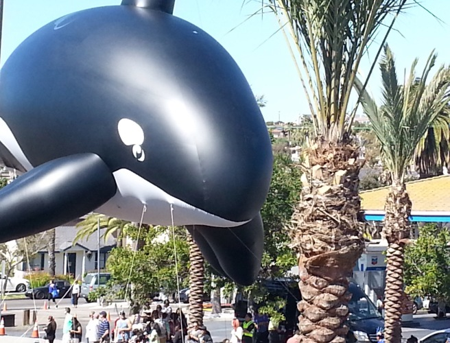 Dana Point Festival of the Whales Parade by southocbeaches.com