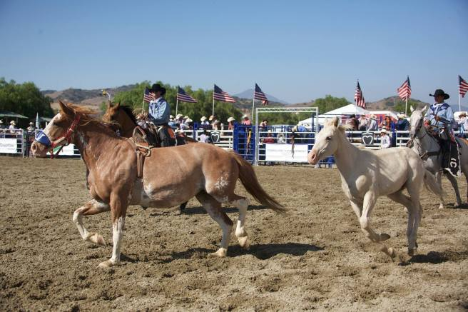 Rancho Mission Viejo Rodeo Courtesy of Facebook.com:RMVRodeo